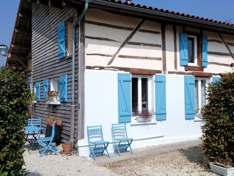 Stylisch house with lovely covered terrace just 10 min. away from 'Lac du Der., holiday rental in Droyes