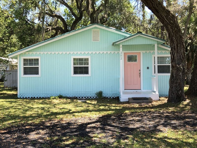 The Palm Breeze Cottage- Wifi, holiday rental in Steinhatchee