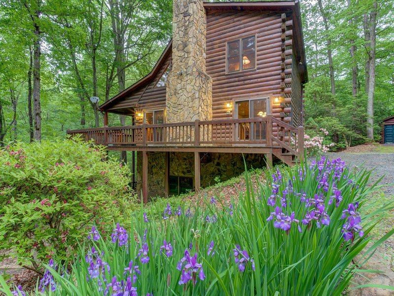 Creekside family retreat w/private hot tub, billiards table, & tree-lined views, casa vacanza a Mineral Bluff