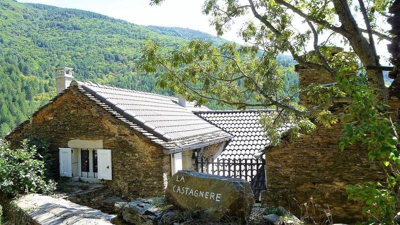 Gite en Hautes Cévennes : CASTAGNERE 4*, location de vacances à Saint-Frézal-de-Ventalon