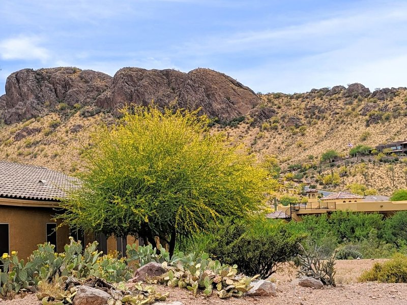 Stunning Mountain Views from this Gold Canyon Home!, Ferienwohnung in Gold Canyon