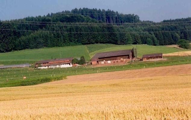 Ferienwohnung Aesch ZH für 9 - 11 Personen mit 4 Schlafzimmern - Ferienwohnung, location de vacances à Obfelden