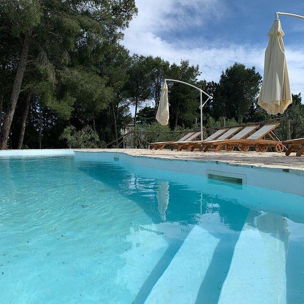 Bellissima Villa con piscina e uliveto a 10 minuti dalle meravigliose spiagge, holiday rental in Miggiano