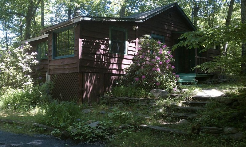 Cabin With Rushing Stream In Backyard For Peaceful Retreat, alquiler de vacaciones en Shandaken