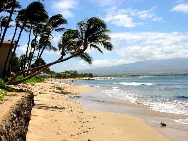Kanai A Nalu 305- Well kept secret spot- Views and Quiet- Two bedroom two bath, location de vacances à Wailuku