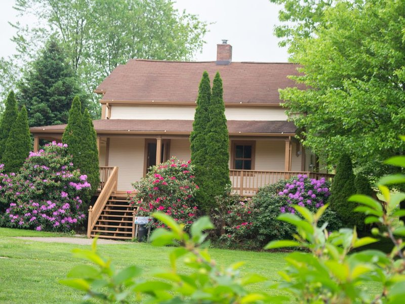 Stay at this Historic Farmhouse at SanaView Farms in the Laurel Mountains!, vacation rental in Mount Pleasant