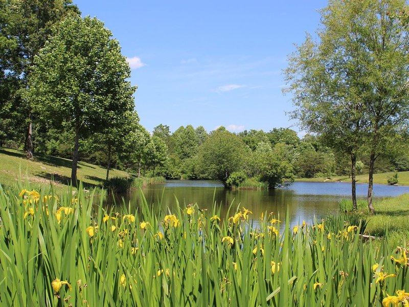 Stocked fishing pond.