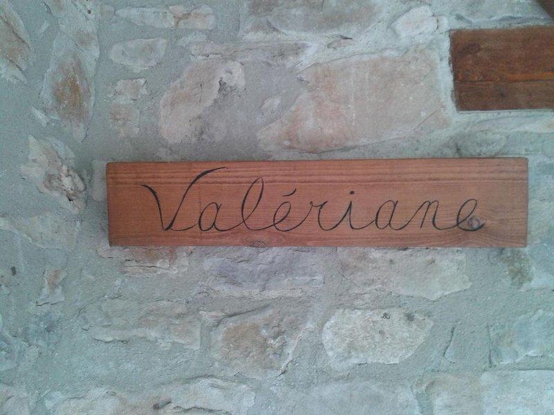 Valériane douceur de vivre, confort, piscine plage et rochers, détente, joie, vacation rental in Meyrannes