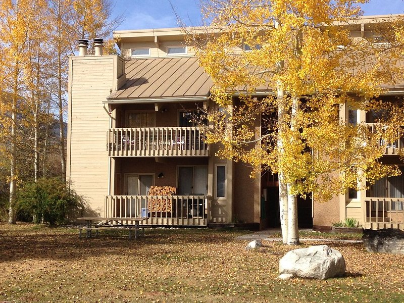 Special Location! 3BR+/3BA Sleep 10+ in Comfort! Pets too!, holiday rental in Frisco
