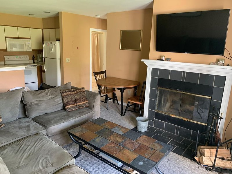 Mount Snow condo -  Moover Shuttle to Resort, pool, WiFi, alquiler de vacaciones en Dover