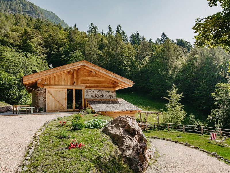 ODOMI MASO NEL BOSCO  cipat 022168-AT-138146, holiday rental in Roncegno Terme