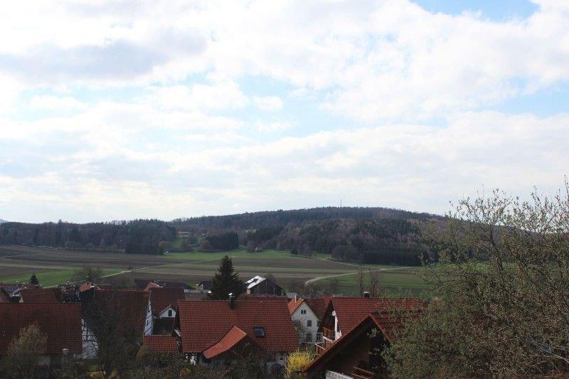 Buck, (St. Johann), LHS03949 view