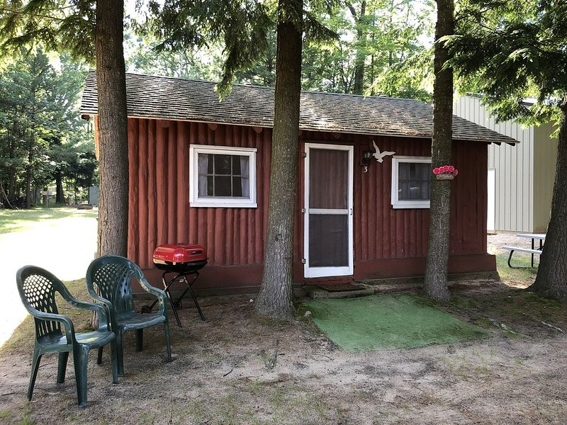 Cozy 'Beach' Cabin in the woods with Pentwater Lake frontage and access, location de vacances à Pentwater