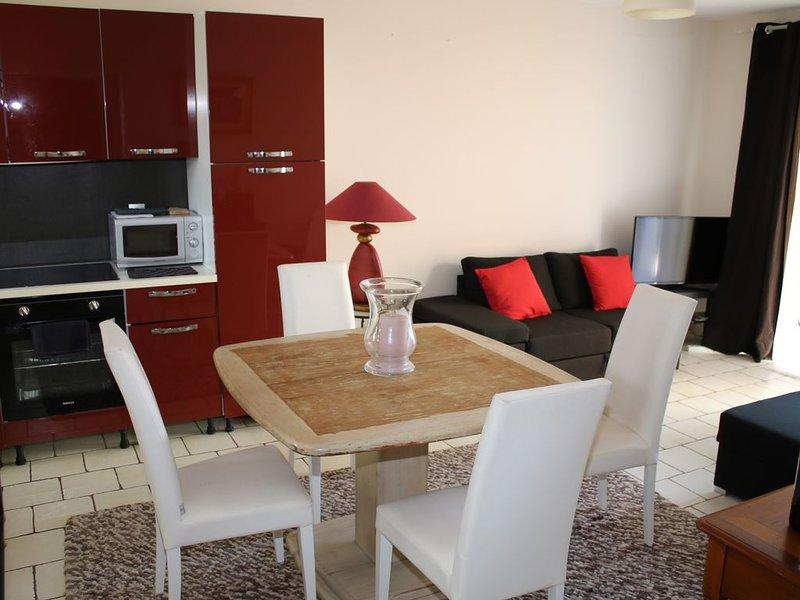 apartment sleeps 2 to 4 kms of Avignon, terrace, parking, wifi, holiday rental in Villeneuve-les-Avignon