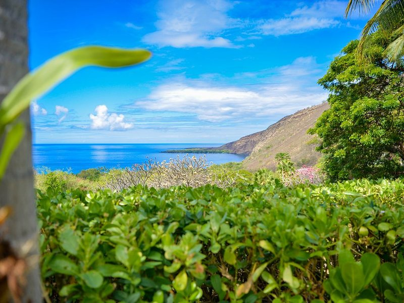 Actual view of ocean and Kealakekua Bay from the guest house.