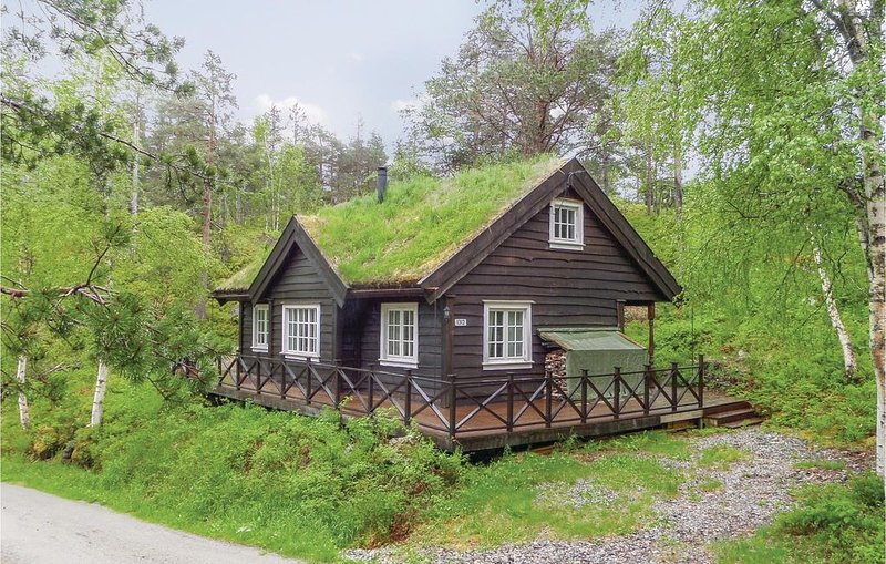 4 Zimmer Unterkunft in Granvin, location de vacances à Granvin
