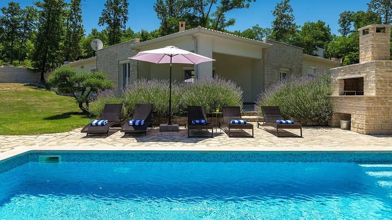 Beautiful villa with private pool near Labin, location de vacances à Vozilici