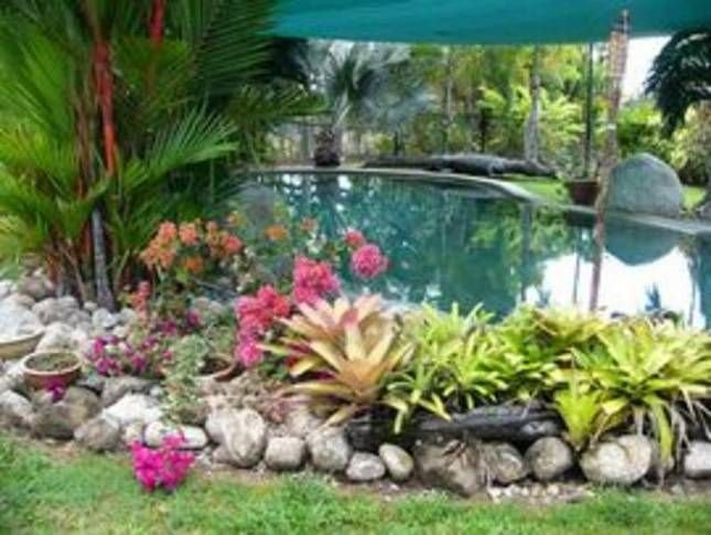 Daintree Wild Bed and Breakfast, vacation rental in Whyanbeel