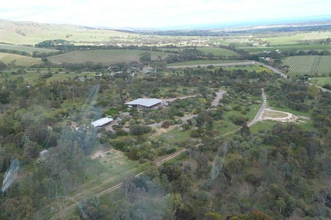 Country living close to city, holiday rental in Aldinga Beach