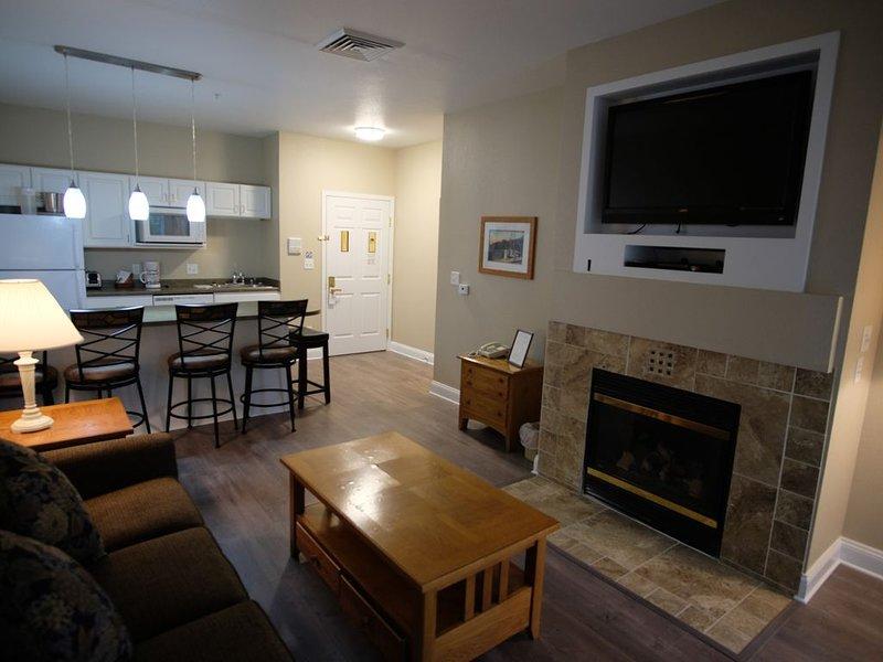 125- 1 bedroom suite, vacation rental in Elkhorn