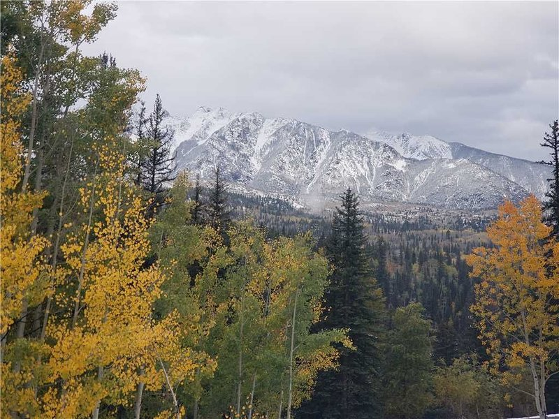 Large Studio with views of the Needle Mountains, kitchenette ,wood burning firep, casa vacanza a Vallecito Lake