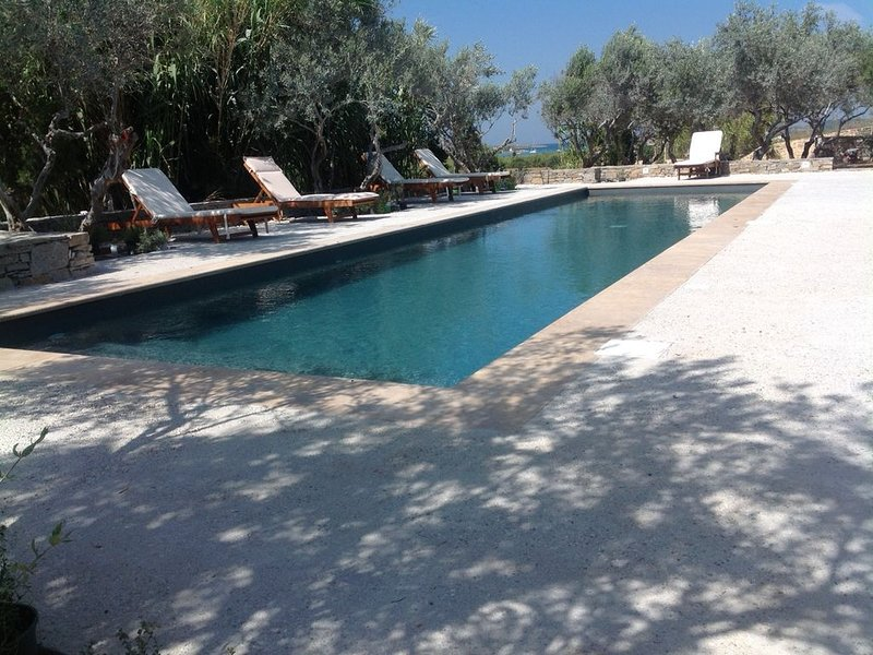 Adam Estate - Studio B, C and D with a Swimming Pool, in a Vineyard by the Sea, holiday rental in Kolimpithres