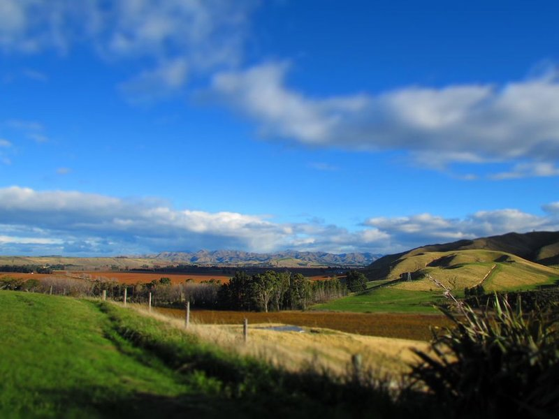 Top Hill Retreat  Farmstay - With  270 degrees stunning Views !, location de vacances à Marlborough Region