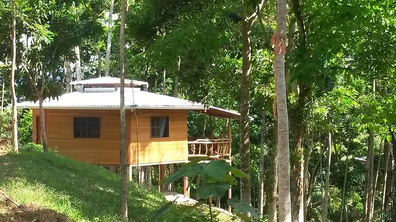 Forest Cabin and Hot Springs, holiday rental in Atlantida Department