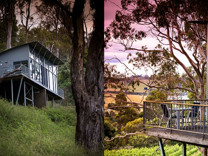 River Vineyard Retreat secluded sanctuary overlooking vineyard and Tamar Valley, holiday rental in Rosevears