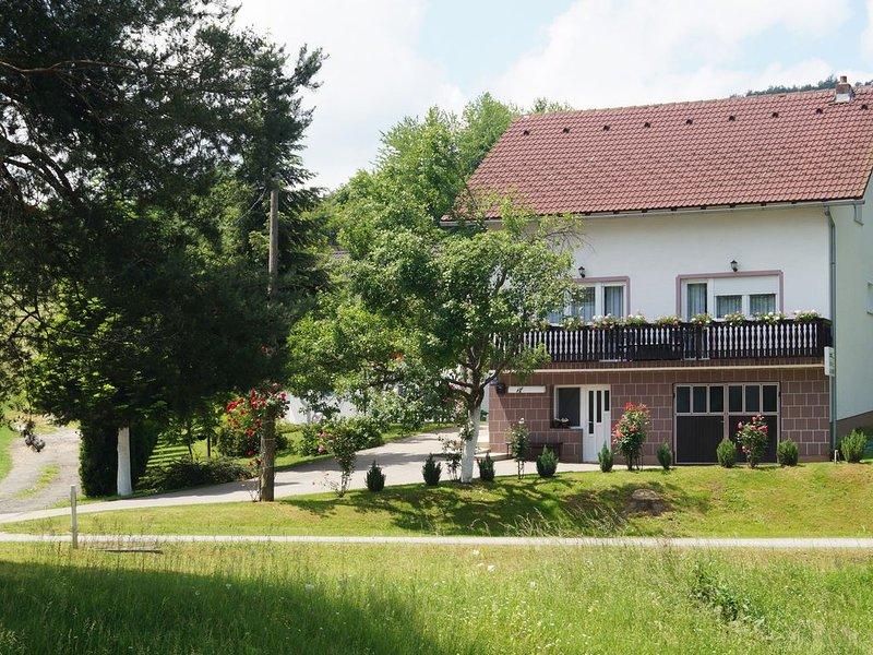 Apartment Drago, Rakovica, holiday rental in Rakovica