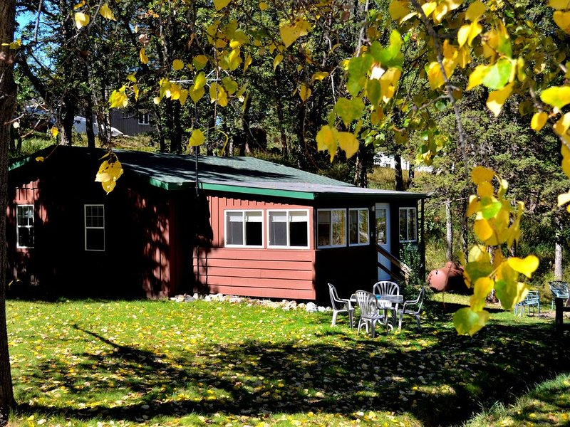 A beautiful 2 bedroom cottage-style cabin minutes from Rushmore, holiday rental in Keystone