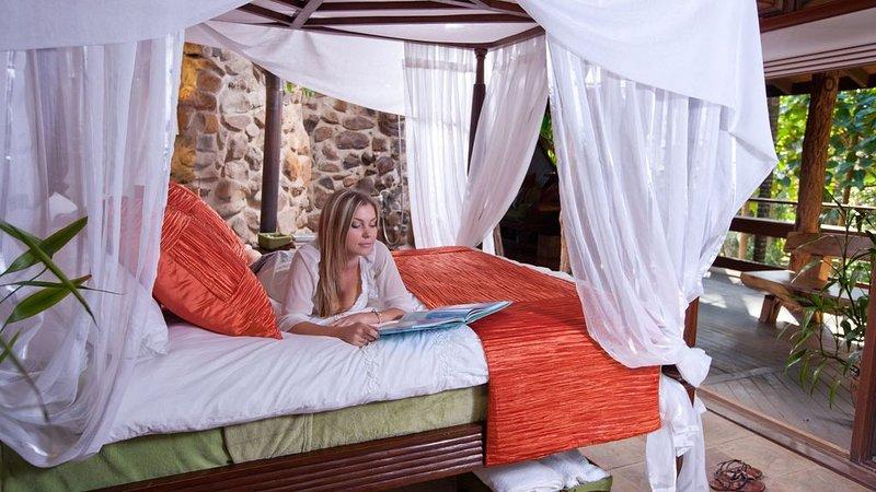 Gaiananda Treehouse, holiday rental in Lamington National Park