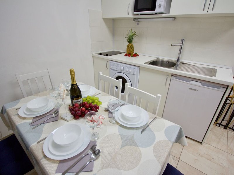 Apartment Blue Point in the center of Ljubljana, holiday rental in Domzale