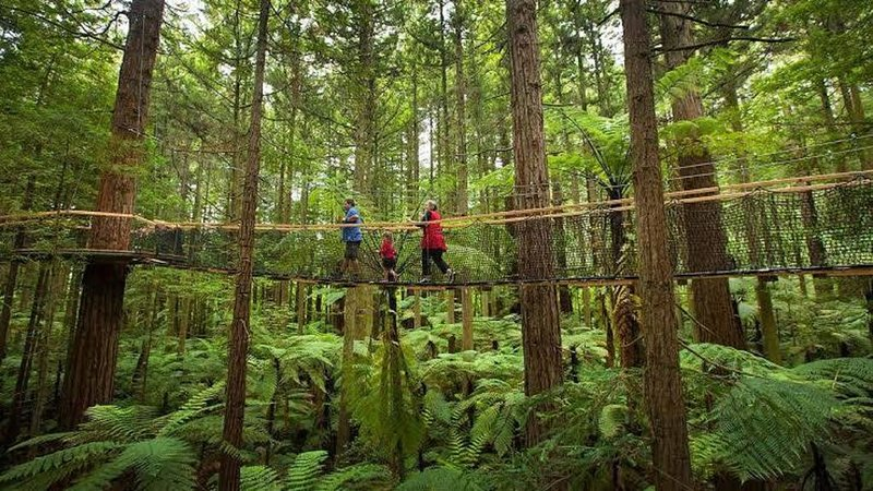 REDWOODS - Just a pedal away COME & STAY!, holiday rental in Rotorua