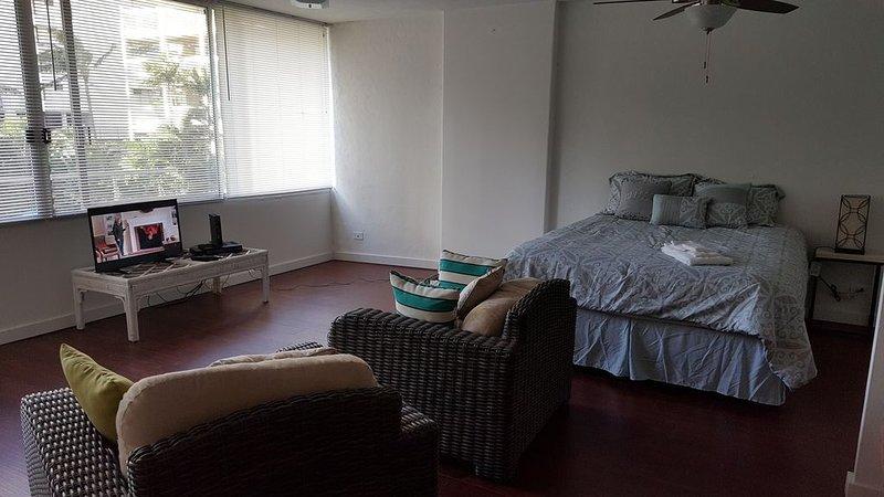 waikiki spacious studio, holiday rental in Springwood