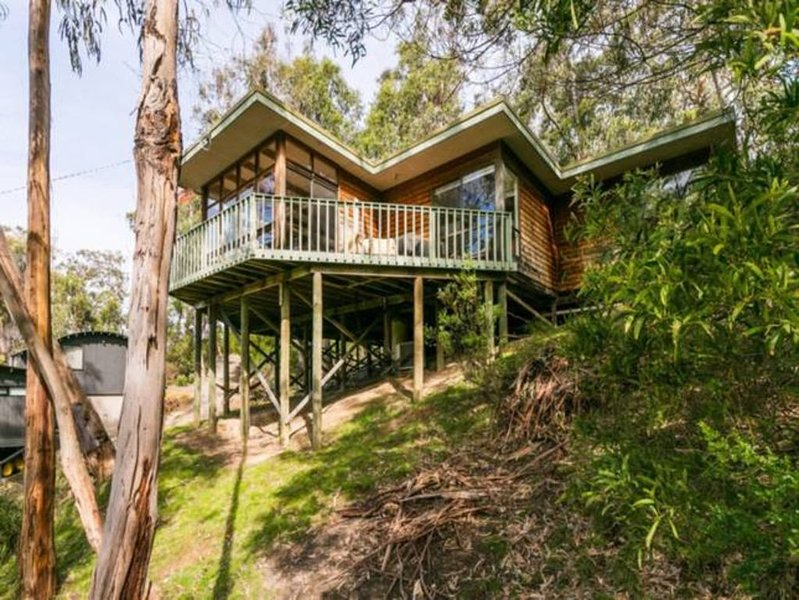 Yaringa - Retreat in the trees, casa vacanza a Forrest