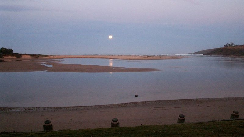 Moonlight on Moonee Beach, holiday rental in Mullaway
