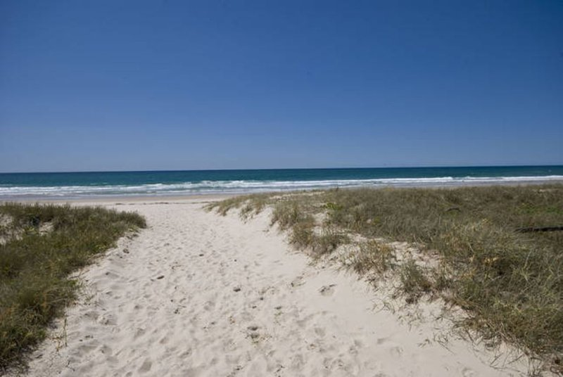 TINA'S BEACHSIDE AT BILINGA -  Beautiful beachfront with 180 degree ocean views, holiday rental in Gold Coast
