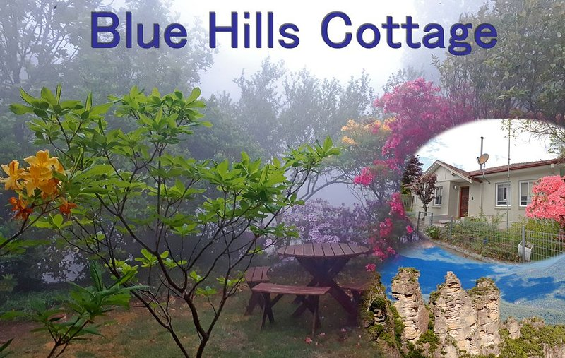 Blue Hills Cottage - Katoomba!, location de vacances à Katoomba