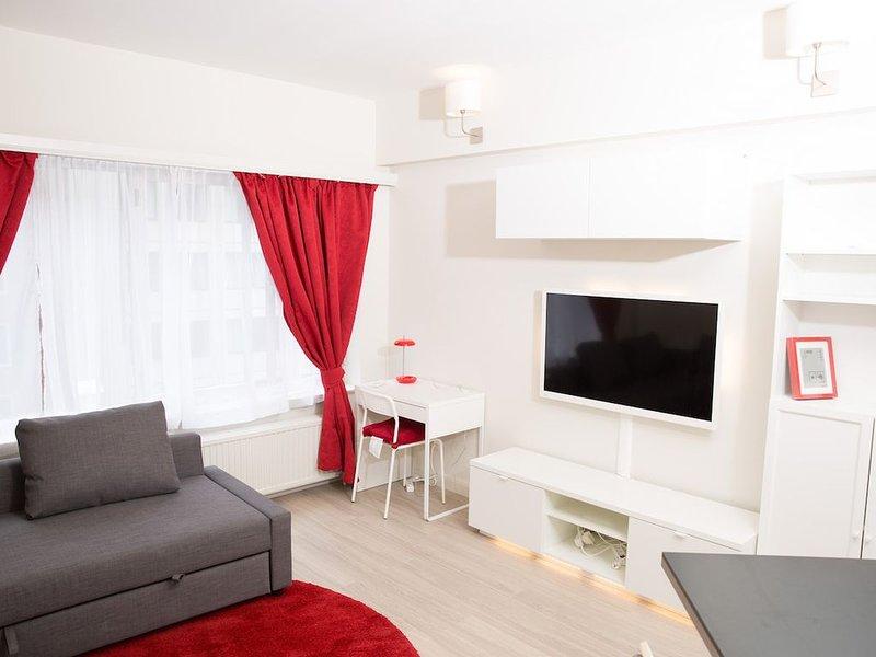 Luxury Studio in the EU Area, alquiler de vacaciones en Nossegem