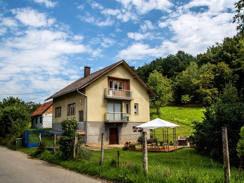 Spacious country house with amenities close to beautiful river, alquiler de vacaciones en Gornji Zvecaj