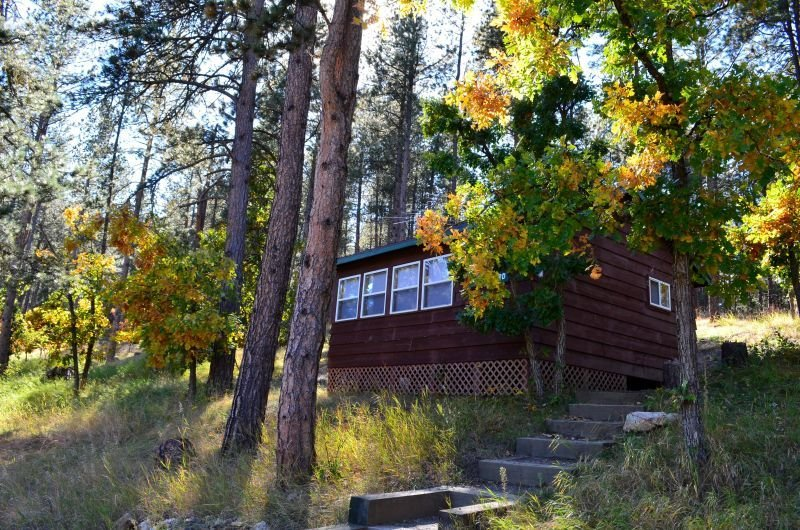 Cozy cabin in the woods, vacation rental in Hermosa