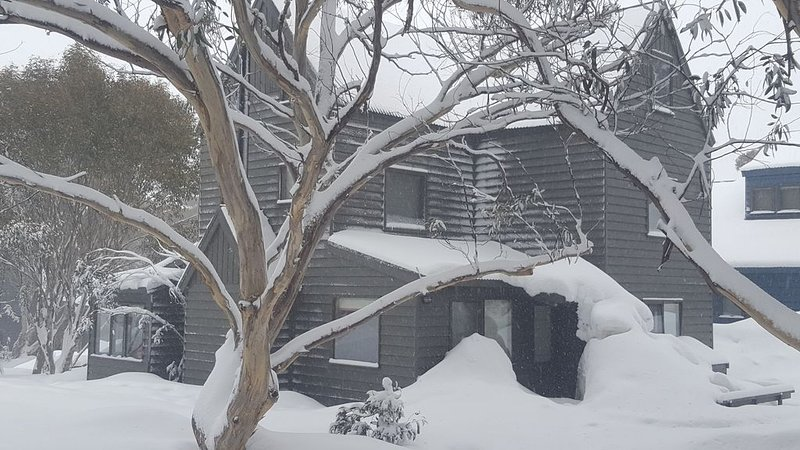 Gifford chalet dog friendly., alquiler vacacional en Mount Hotham