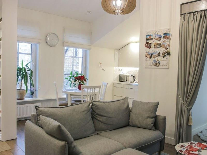 3 Bedroom Apartment with Fireplace in City Center, holiday rental in Paberze