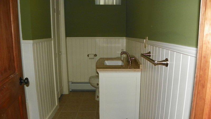 Lower Bathroom2.JPG