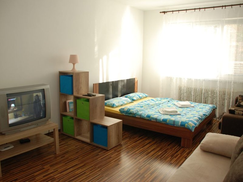 CENTRUM BB- middle of Europe, vacation rental in Liptovske Revuce