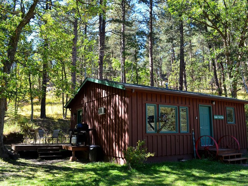 A gorgeous 2 bedroom cabin at the back of the property, holiday rental in Keystone