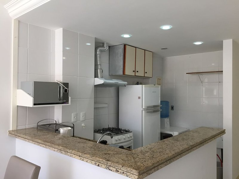 Kitchen equipped with stove, microwave, fridge, sandwich maker and blender