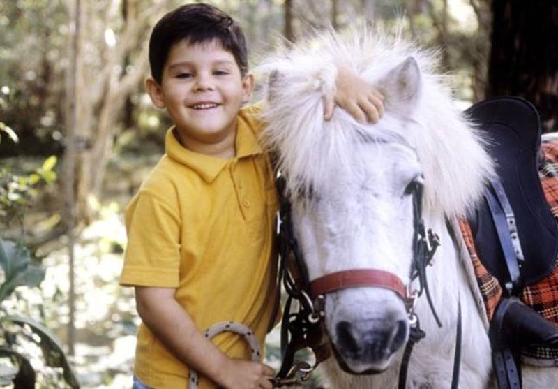 Mooloolah Valley Sanctuary ... an adventure in nature ... kids, families, groups, aluguéis de temporada em Eudlo