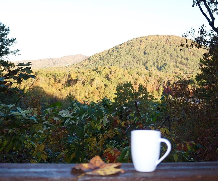 Rustic Cabin with a Great View, vacation rental in Sautee Nacoochee